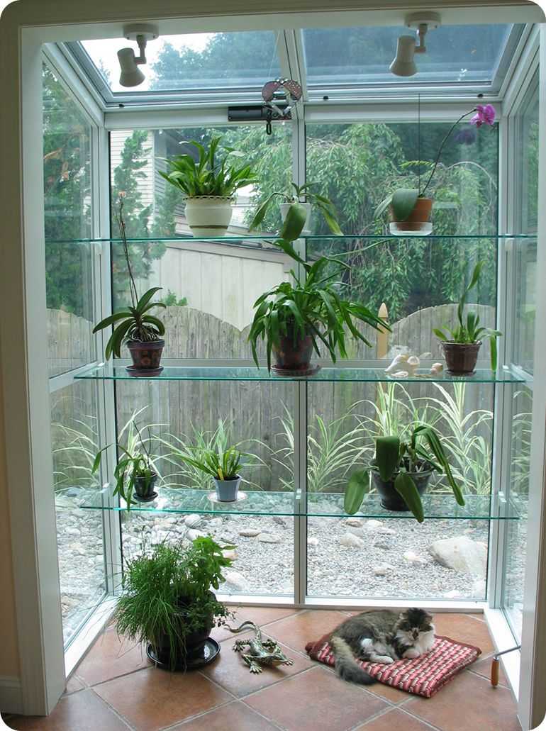 Here\'s the ultimate #GardenWindow - floor-to-ceiling, creating a ...