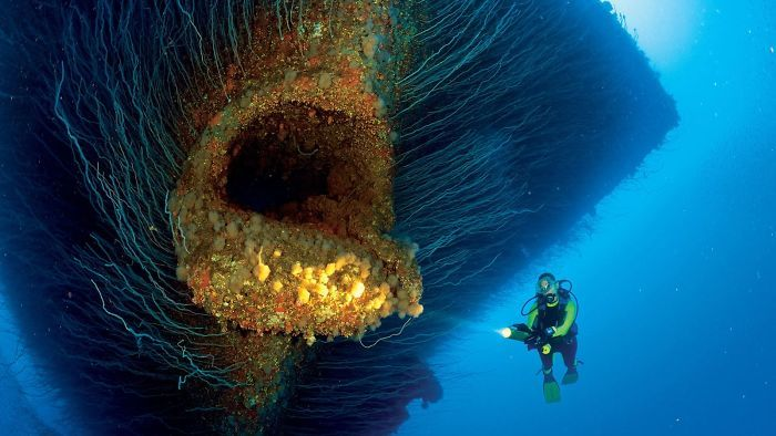 The Bow Of This Sunken Ship Looks Like A Giant Fish's Mouth