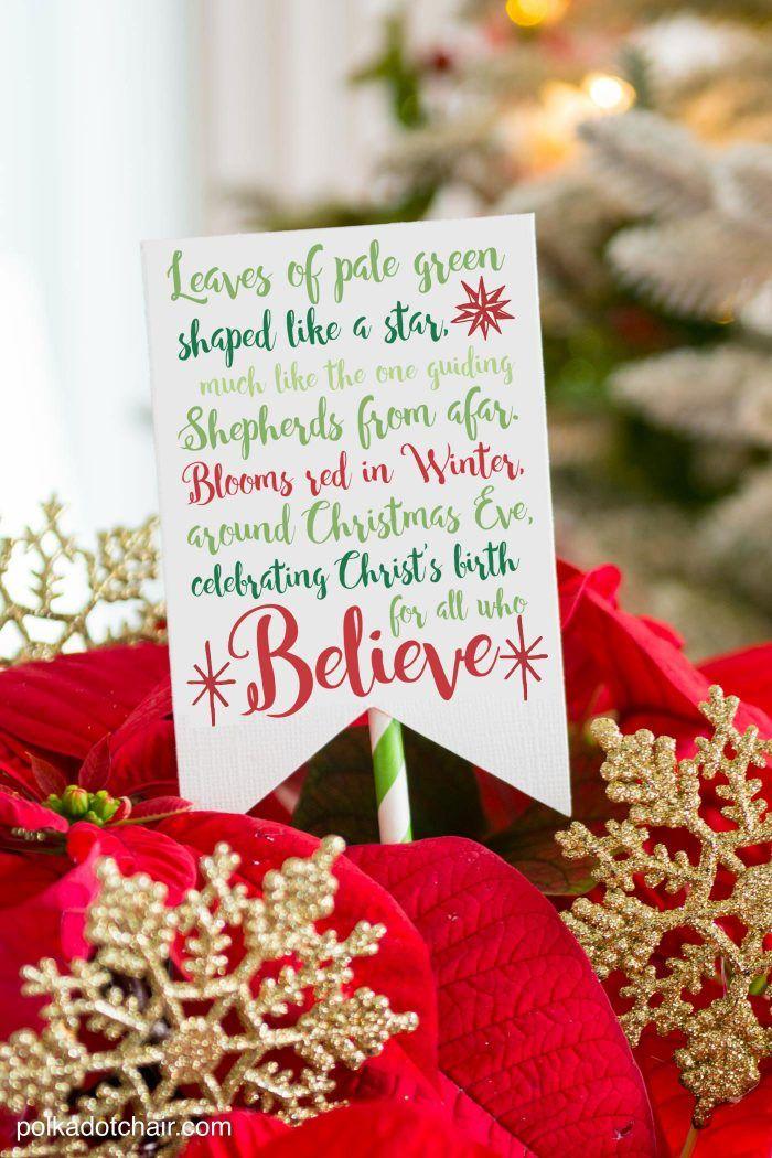 Poinsettia Christmas Gift Idea Poinsettia, Poem and Ornament