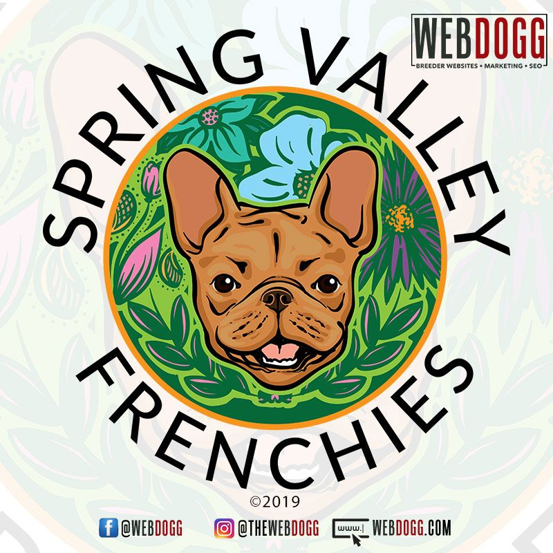 Breeder Logo Design For Spring Valley Frenchies In Texas Dog
