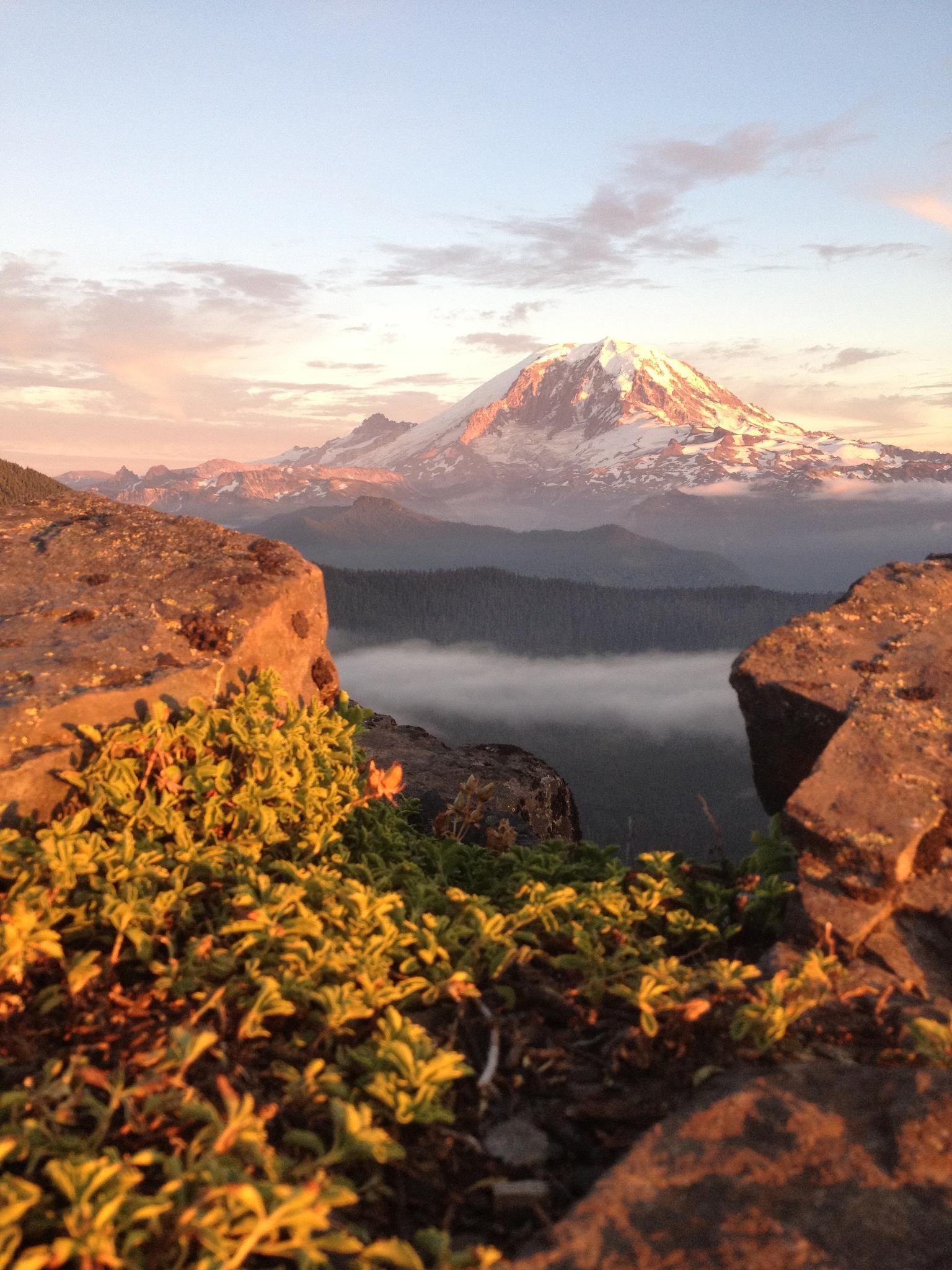 Jesse's Mt. Rainier