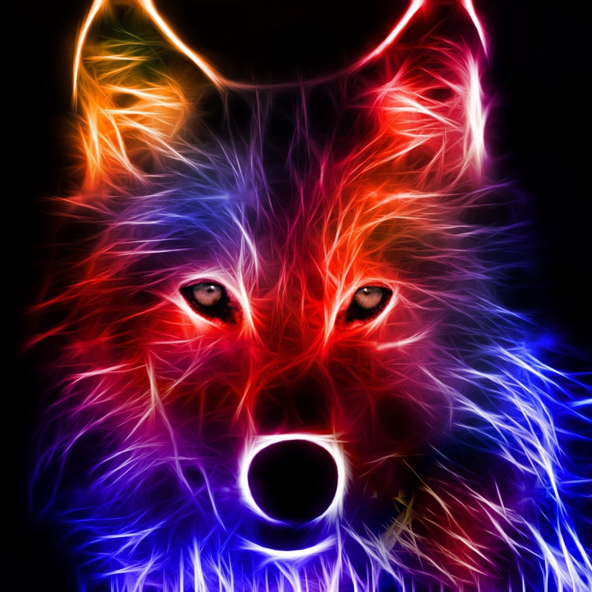 A Cool Neon Wolf Wolf Wallpaper Abstract Wolf Wolf Pictures