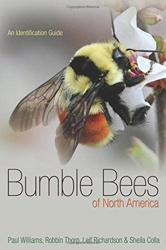 Bumble Bees of North America An Identification Guide (Princeton