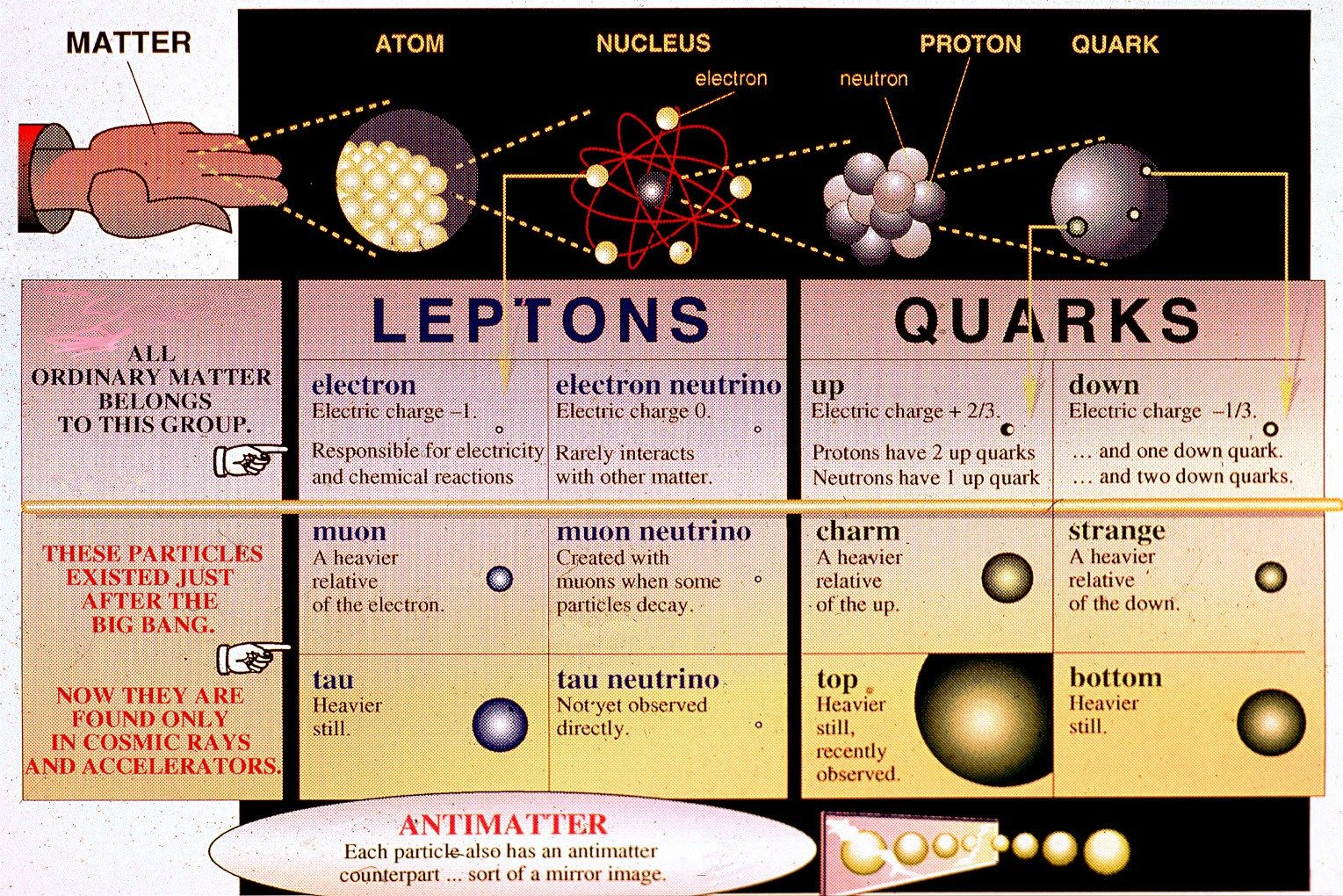 Quarks And Leptons The Stuff Of Matter Elementary Particle