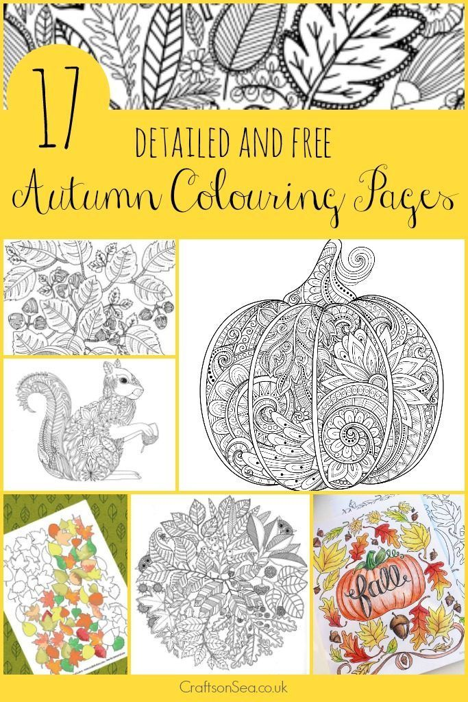 17 Detailed Autumn Colouring Pages Fall Coloring Pages Fall Coloring Sheets Coloring Pages
