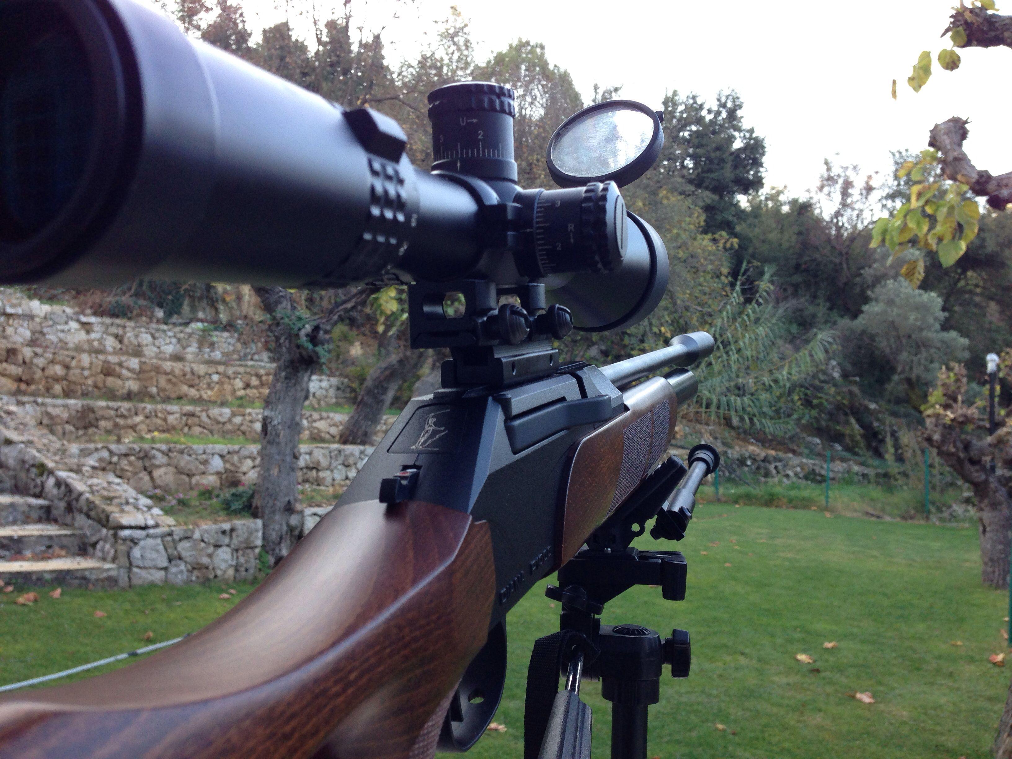 Diana P1000 | Diana Air Rifle | Air rifle, Guns, Diana