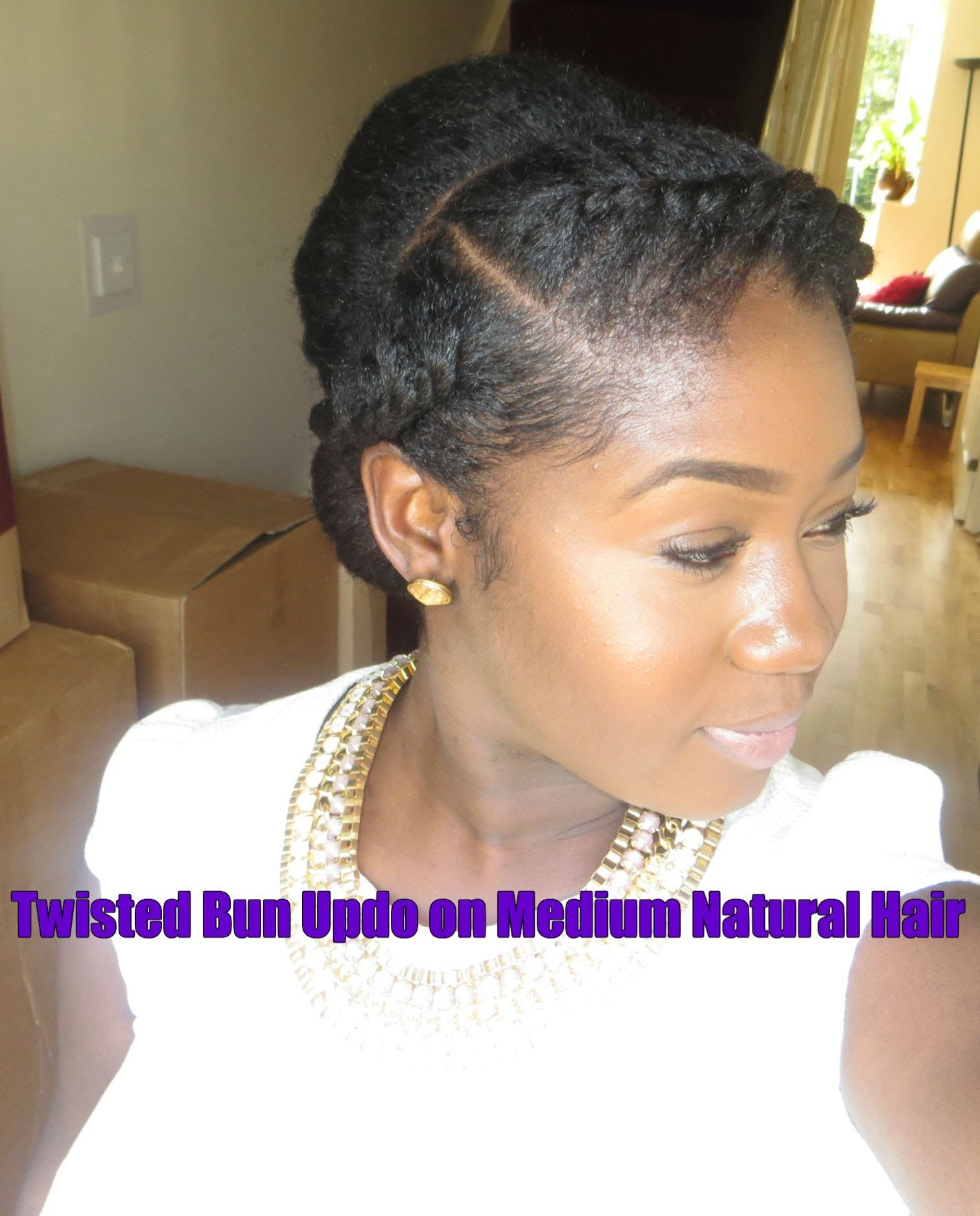 19 Twisted Updo on Medium Natural Hair Hair