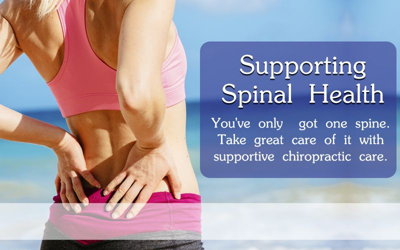 Did you know Chiropractic care, Chiropractic, Did you know