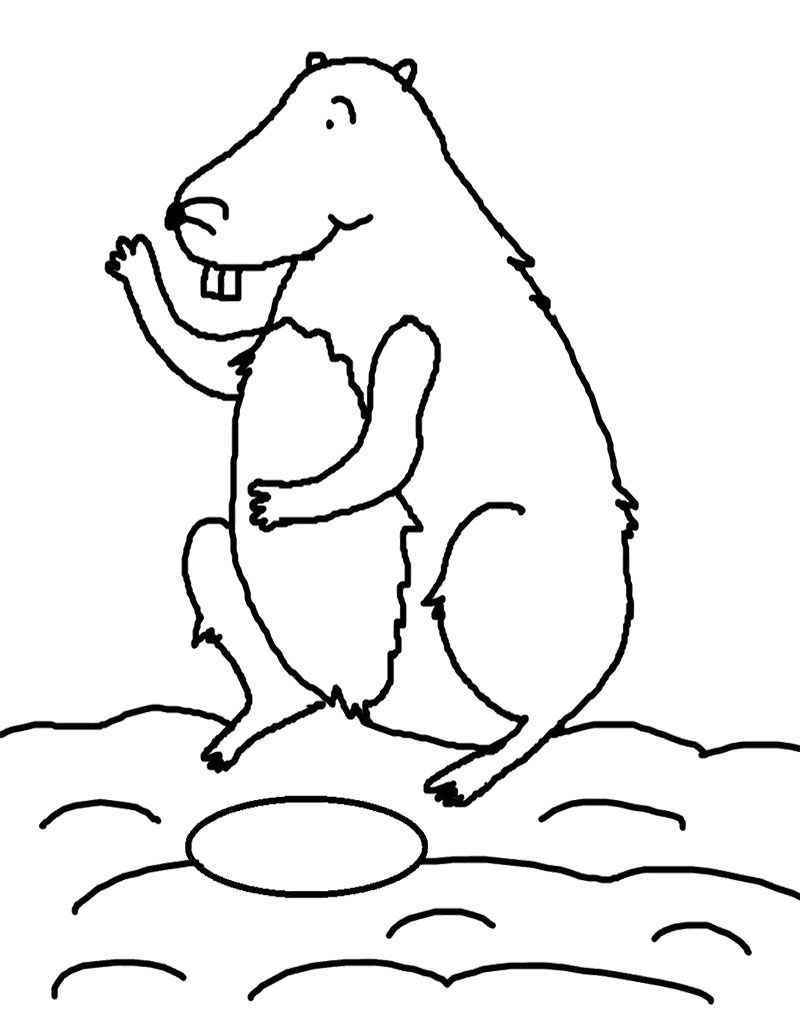 Groundhog Happy day coloring page pictures rare photo