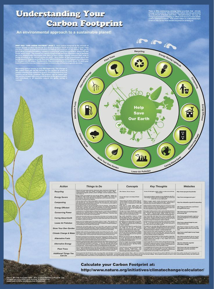 "Understanding Your Carbon Footprint 38x26"" Environmental"