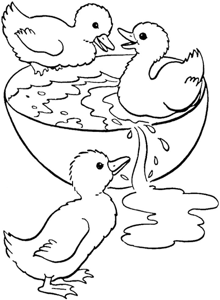 Swimming Coloring Pages
