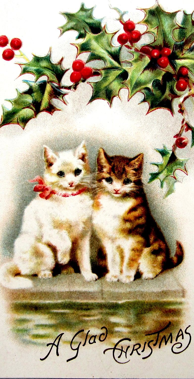 A Glad Christmas From The Cats Christmas Card Art Christmas Ephemera Cat Christmas Cards