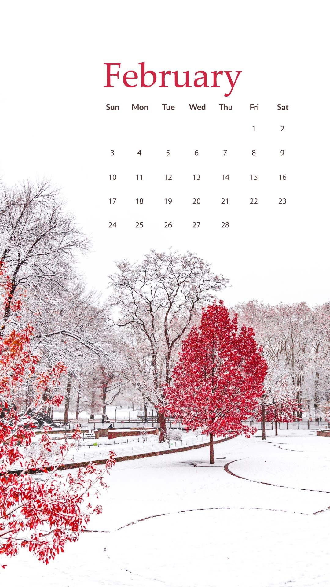 February 2019 Calendar Girly February 2019 Calendar free wallpapers available for iPhone and