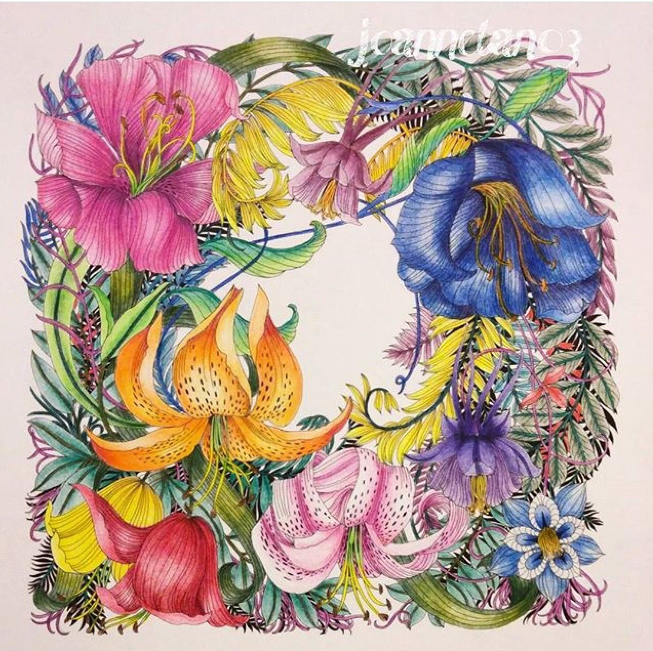 Coloring Pages With Examples. Inspirational Coloring Pages  floribunda leiladuly coloringbooks
