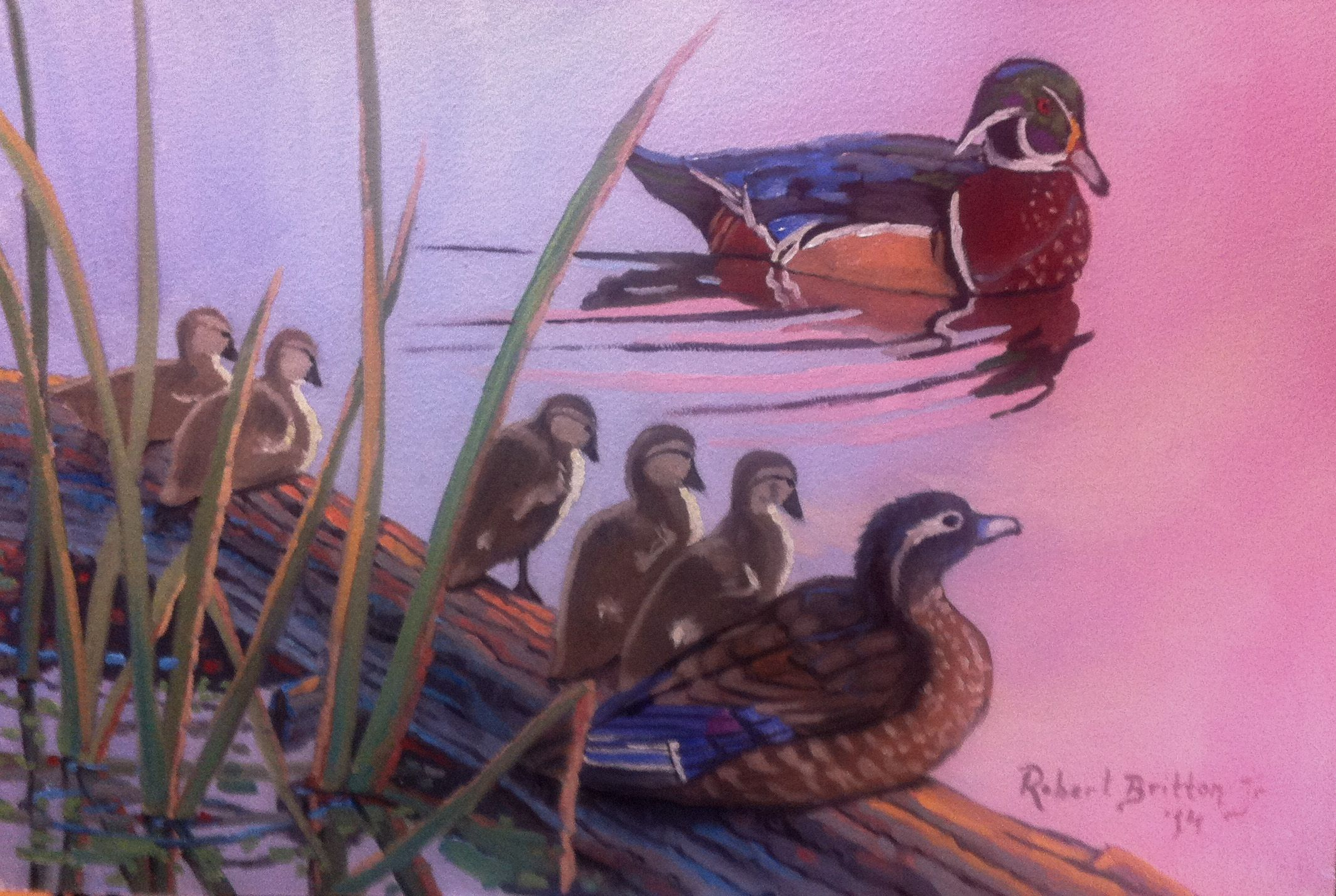 "Woodduck Family Quiet Time 16"" x 24"", Oil on Panel Come visit me on Facebook. http://www.facebook.com/artistrobertpbrittonjr/  Copyright 2014 Artist Robert P. Britton Jr."
