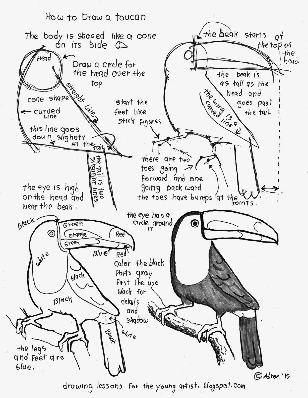 How To Draw A Toucan Bird, Free Printable Worksheet