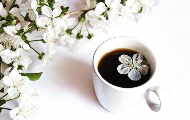 Дорогие воронежцы команда #ДушевногоКофе  поздравляет всех с первым днём весны! Желаем вам бодрости вдохновения  и позитивно-настроенных мыслей !!! Весенняя свежесть бодрит также как и аромат настоящего кофе  #ДушевныйКофе #Кофе #Напитки #Вкусно #Воронеж #Врн #Городкуража #Россия #франшиза #SoulCoffeeVrn #coffee #coffeetogo #takeawaycoffee #instacoffee #yummy #tasty #drinks #mood #tagsforlikes #spring #весна #кофейнявворонеже #кофевворонеже #кофейня #кофессобой #ждемвсех by soulcoffeevrn