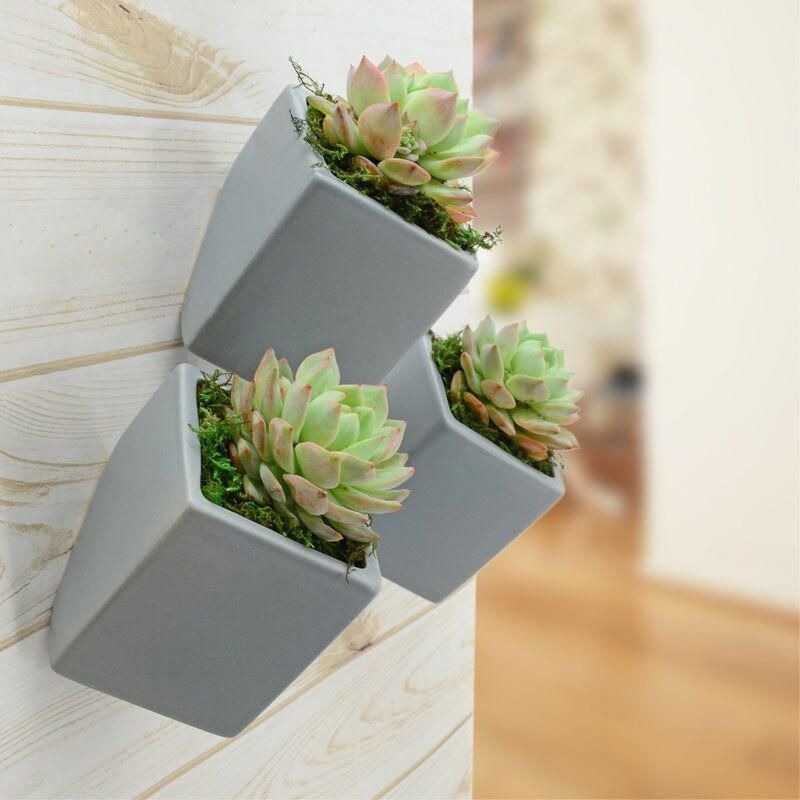 Pin On Wall Planters