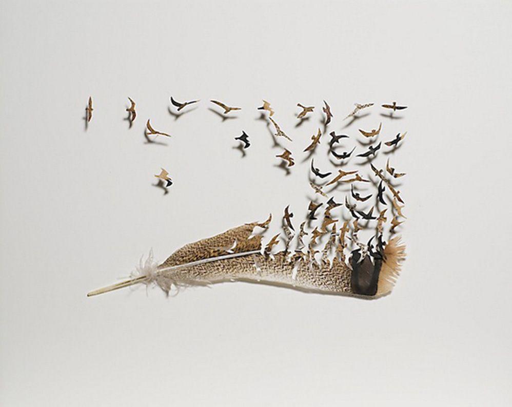 ¡Increíble! Un artista realizó pequeños dioramas con plumas de aves