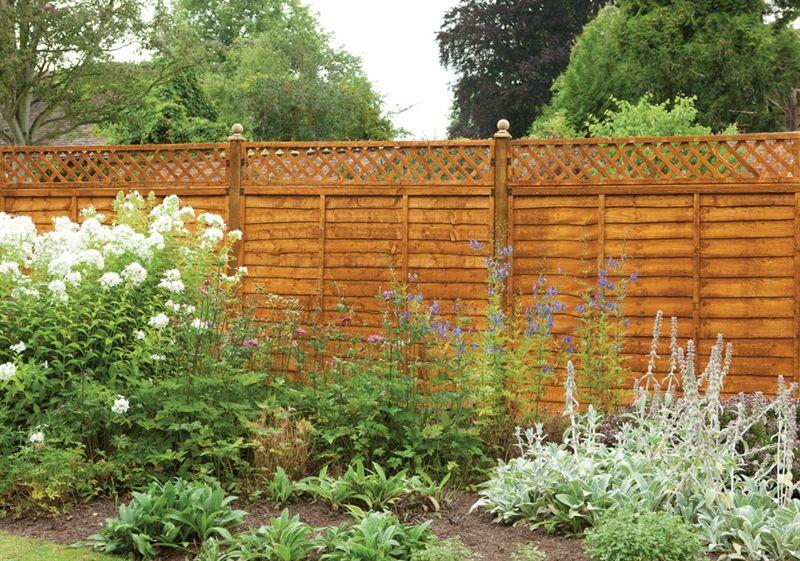 Forest 6 X 1 Diamond Lattice Trellis Fence Topper 1 83m X 0 3m Trellis Fence Lattice Fence Fence Toppers