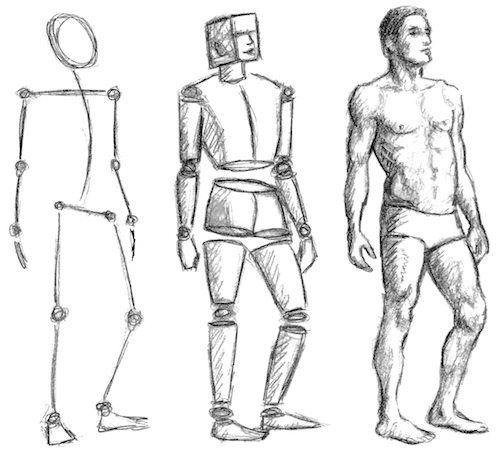 Drawing Secrets Revealed: Figure Basics - The Artist's Life ...