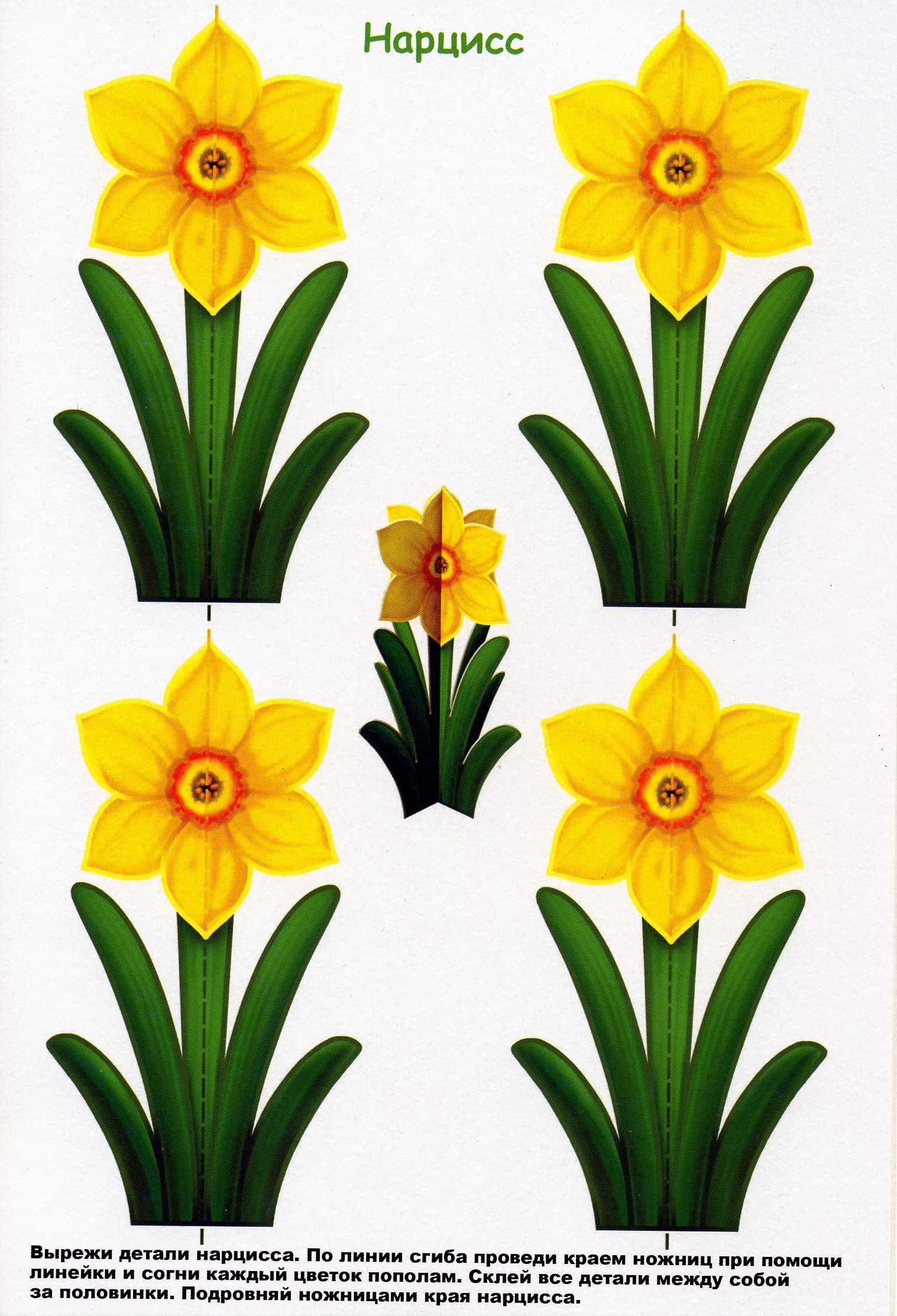 8 марта картинки для вырезания цветные
