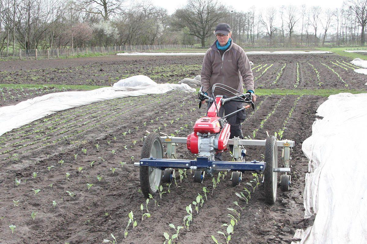 L186F schoffelmachine honda | farm | Jardinage, Jardins, Tracteur