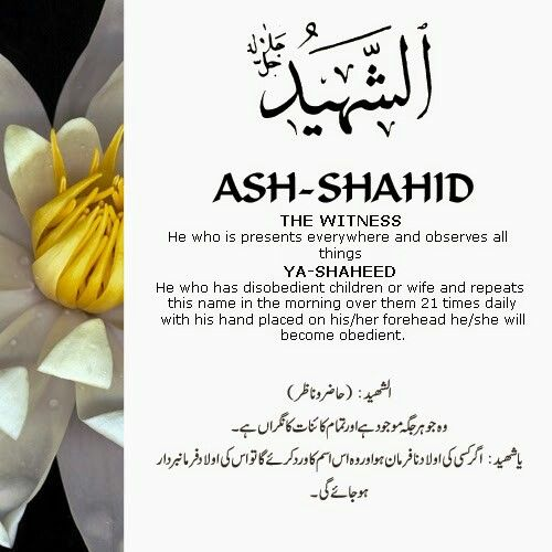 Ash shahid 99 beautiful names of allah by allah 99spot the 99 beautiful names of allah with urdu and english meanings stopboris Images