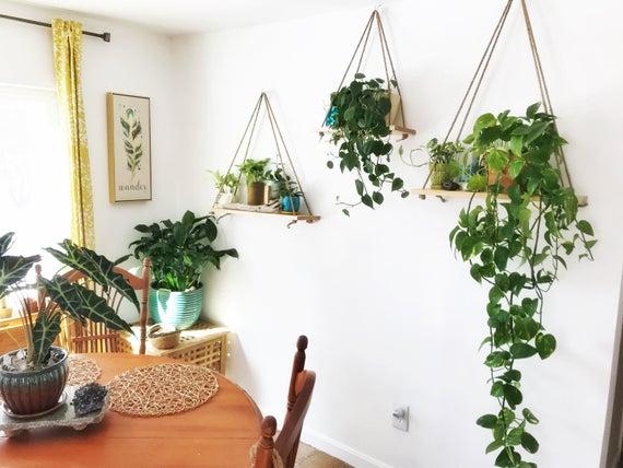 Hanging Maple Plant Shelf Hanging Plant Shelf Wall Shelf Plant