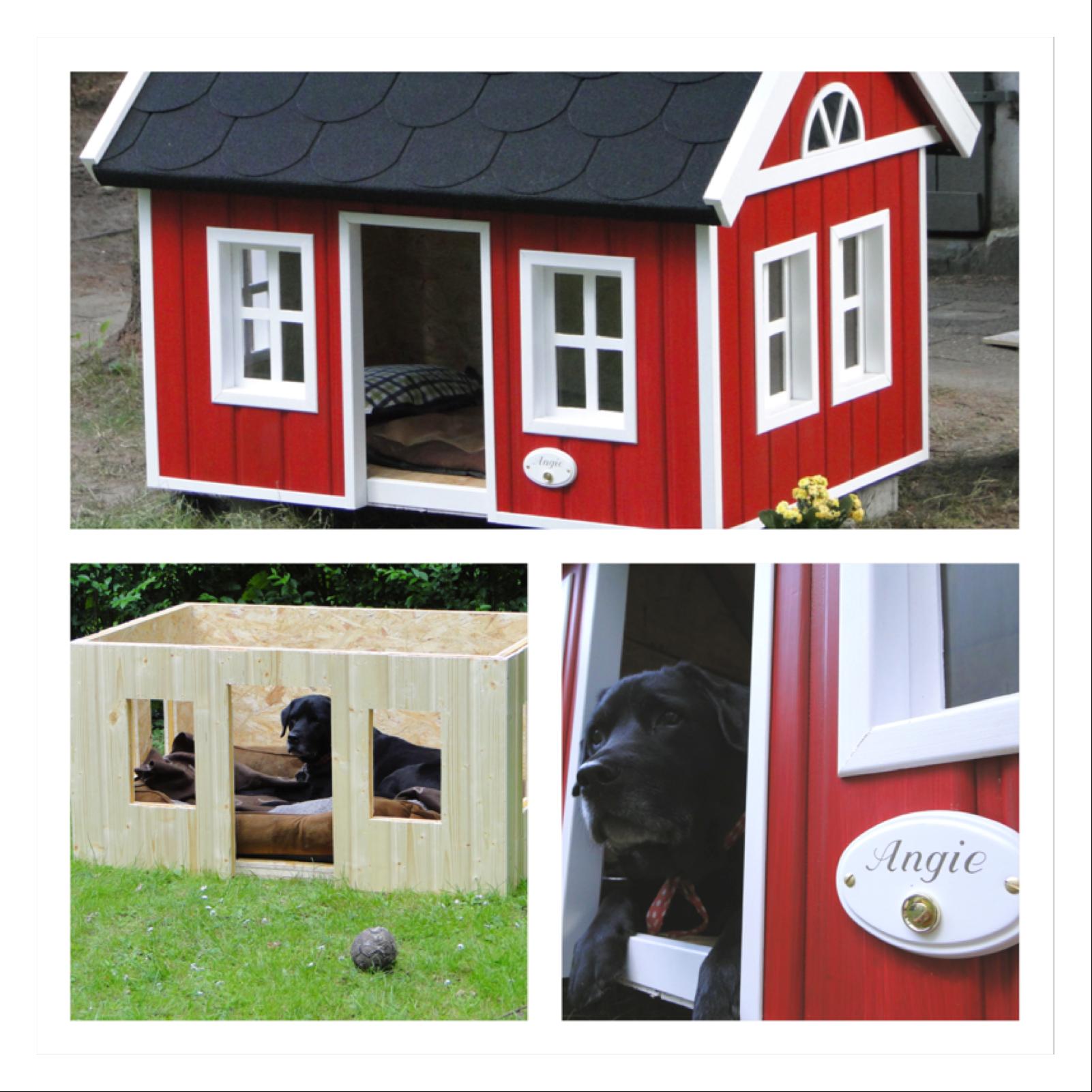 Haus Fuchs: Pin Von Hanni Fuchs Auf Hund