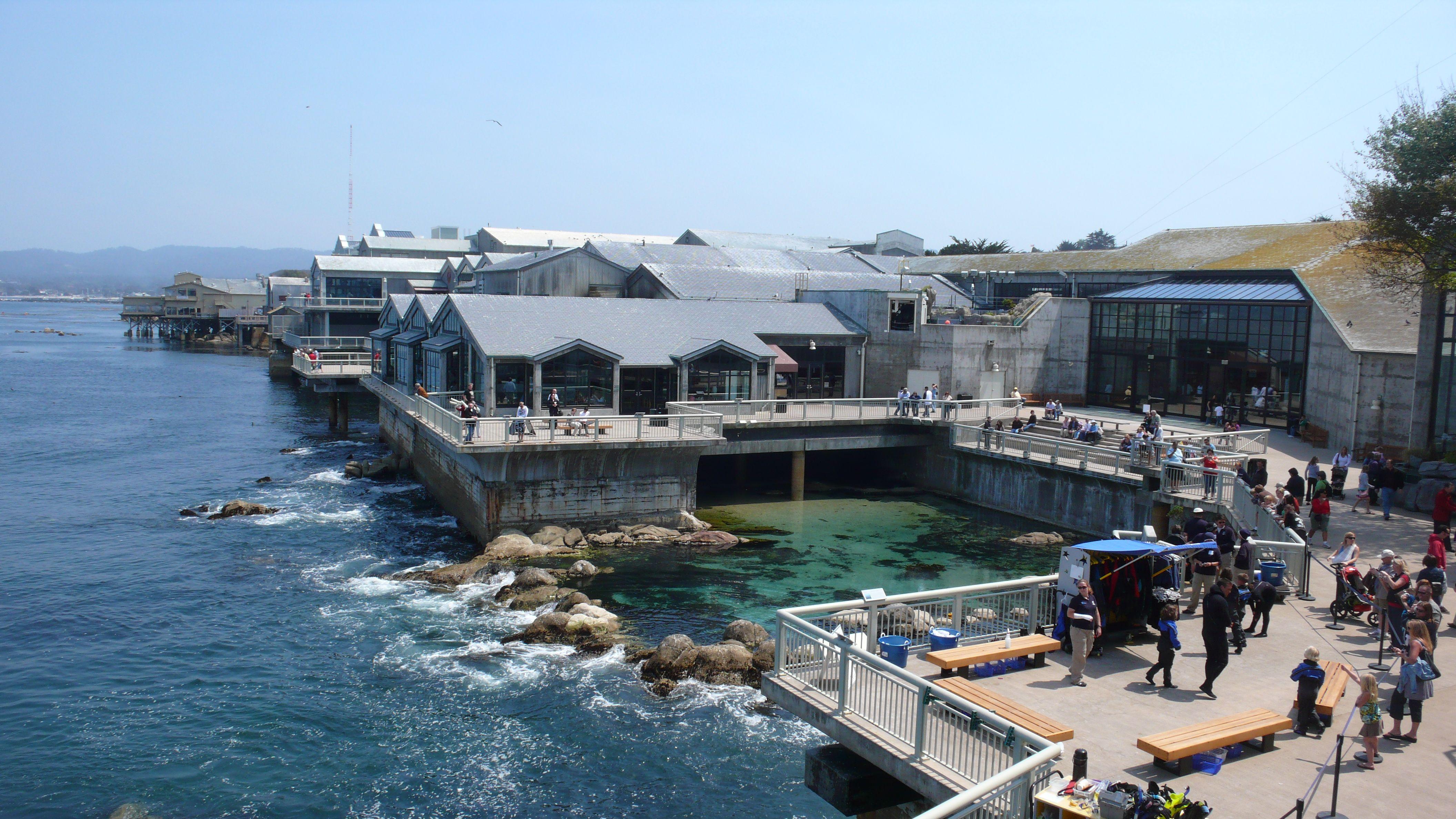 Monterey Bay Aquarium Places I Have Been Pinterest Monterey Bay Monterey Bay Aquarium And