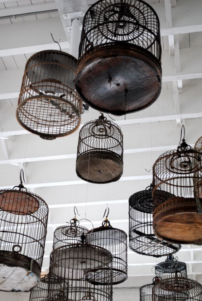 chinese bird cages CELEBRATIONS | Inner West Sydney – Art, Food, Real Estate » White Rabbit Gallery ...