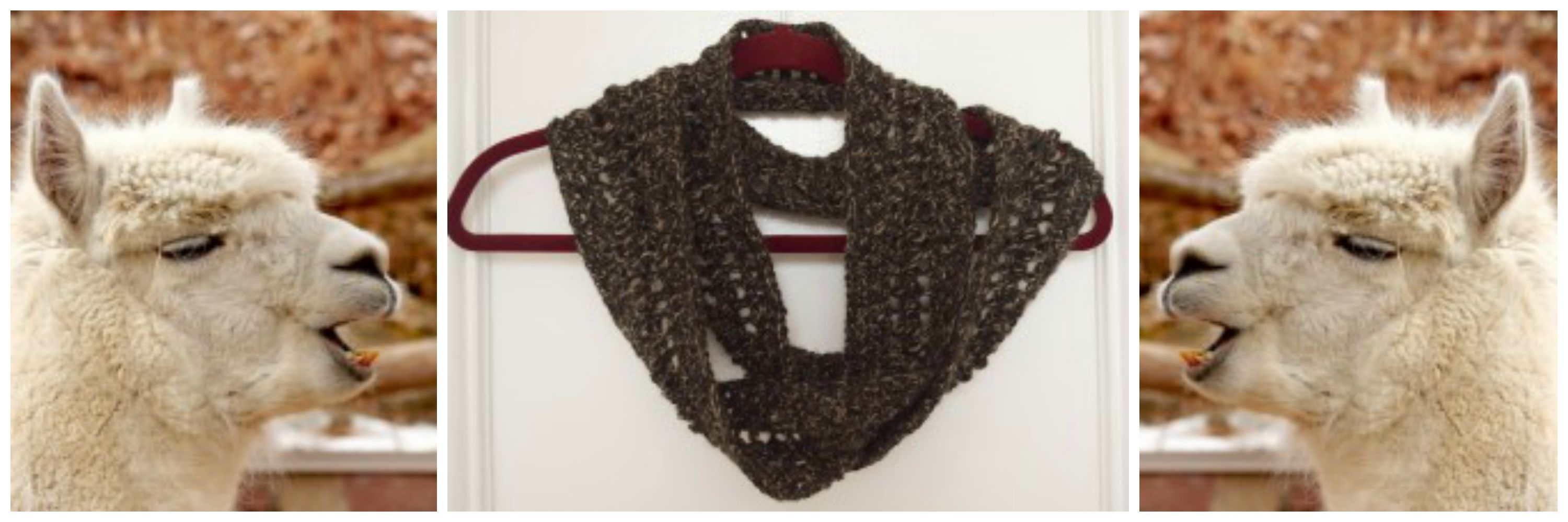 I'm Marie from Underground Crafter. Most crocheters and knitterslove trying out new yarns, and I'm no different. I like to explore and get to know different fibers, and what better way than with a project? In today's post, I'll be talking about alpaca yarn and I'll share a free crochet scarf pattern so you can …