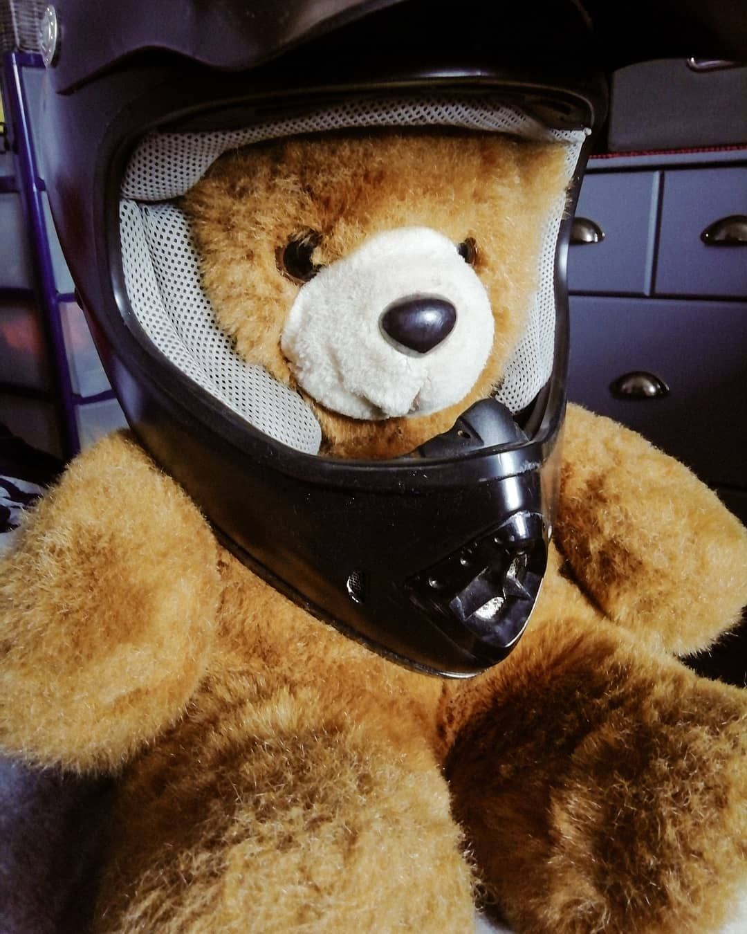 🌫️ Here's my motorcycle helmet ⛑️ Do you ride a motorcycle ? (answer me in comment 🔽) • • ▶️ Follow-me : @jack_lours ▶️ Tag a friend who would like to see that 😉 • • • Hashtags #️⃣ #jacklours #grosnounours #oursons #cuteteddy  #teddybearshop #mondoudou #oursenpeluche #oursfamily #oursbrun #oursmignon #vendreditoutestpermis #brownbears #teddybear🐻 #mignons #motocrossgear #motocrossride #casquemoto #helmetdesign #helmet #blackhelmet #mbkbooster #scootfast #motocross #moto #bike #motorcycle