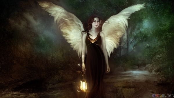 Fairy Woman in the dark forest