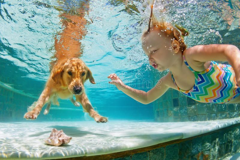 Smiley Child With Dog In Swimming Pool Funny Portrait Underwater