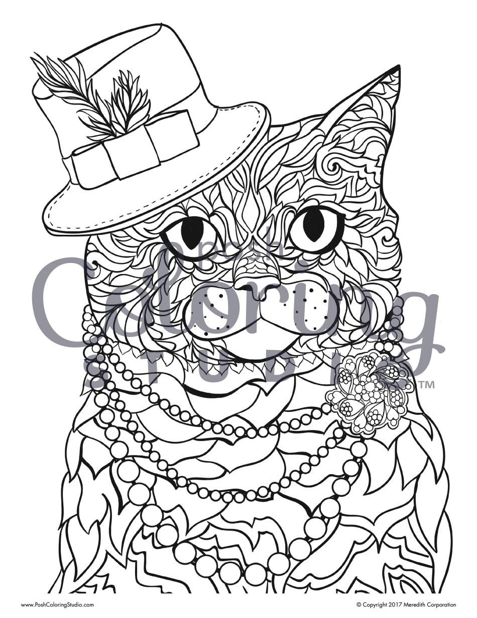 Pin On Animal Coloring Pages Posh