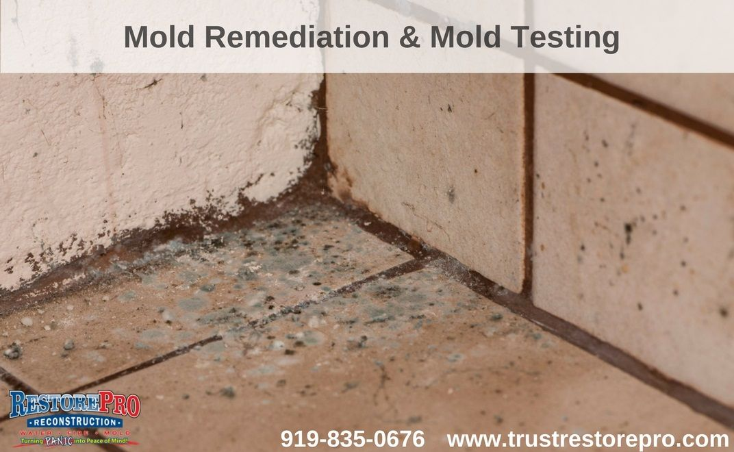Pin On Water Damage Mold Smoke Fire Disaster Restoration For