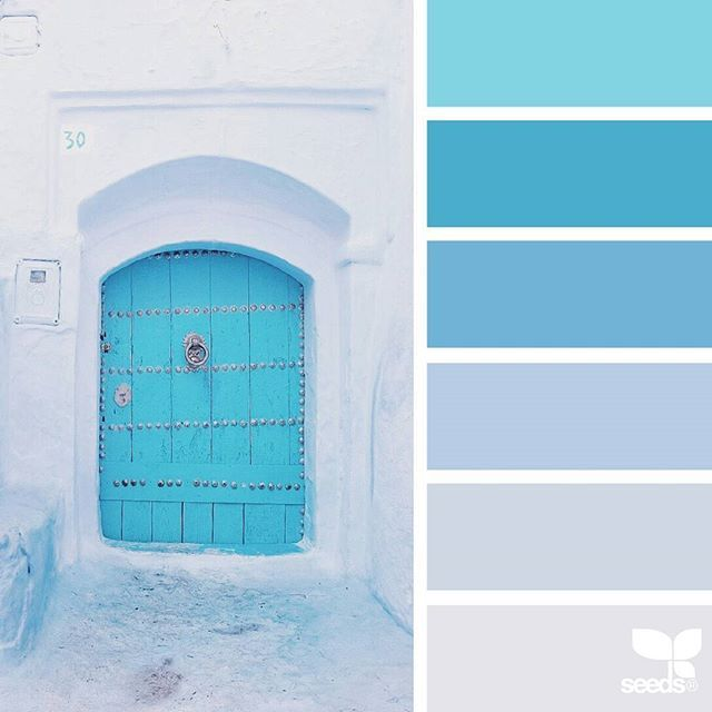 today's inspiration image for { a door hues } is by @in_somnia_ ... thank you, Judith, for another gorgeous #SeedsColor image share!