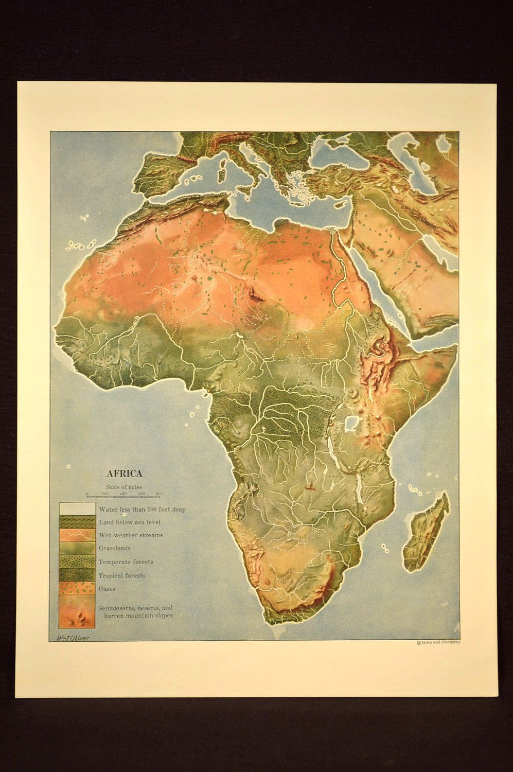 Africa Terrain Map Africa Map Africa Physical Terrain Map Colorful Colored   Africa