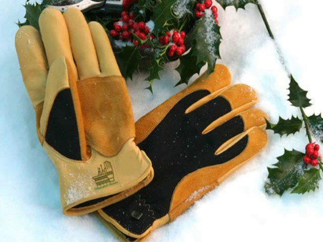 66d485205f114412c2f91d128a906952 - Gold Leaf Gents Winter Touch Gardening Gloves