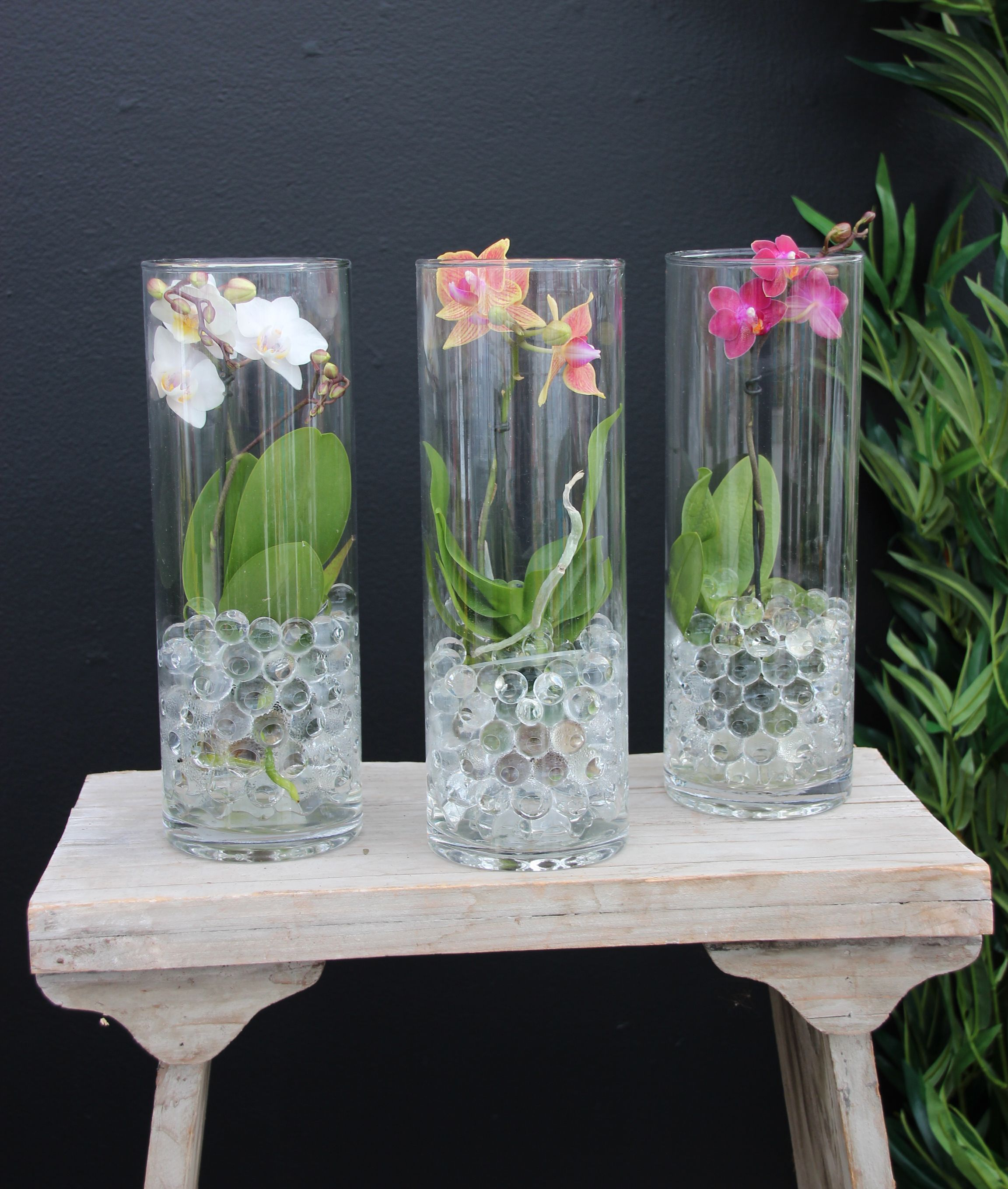 Orchids in glass containers. An elegant look that is easy
