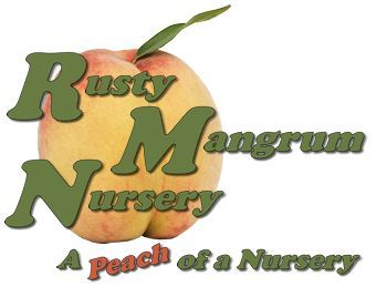 Rusty Mangrum Nursery Peach Le Plum And Pear Trees Whole All Sold Bare Root A Of