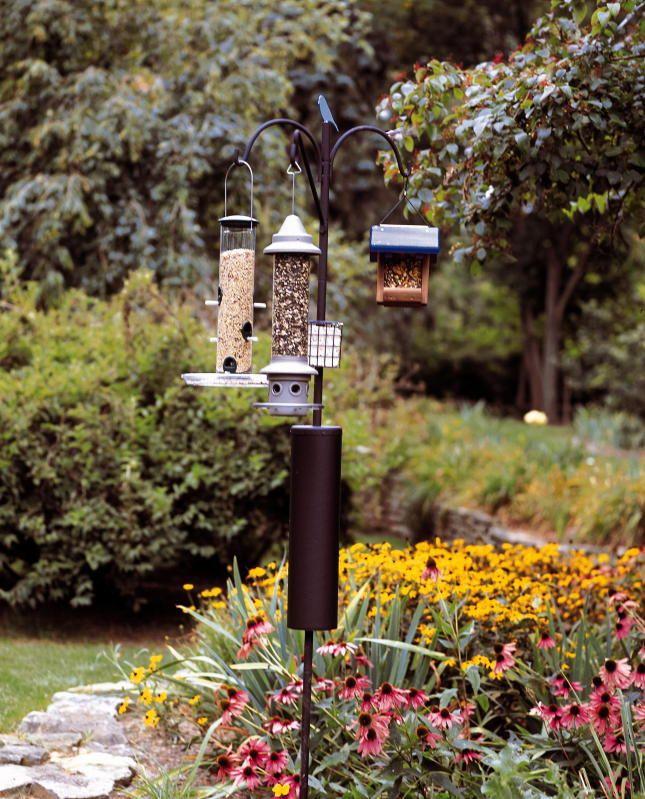 Perfect Raccoon Baffle Bird Feeder Pole
