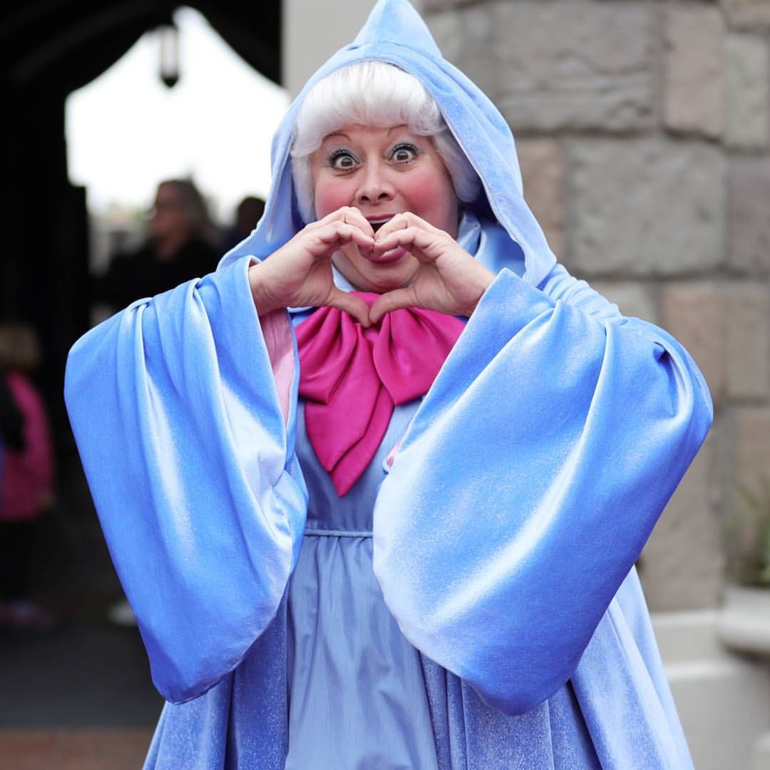Fairy Godmother Disney Face Characters Princess Pictures