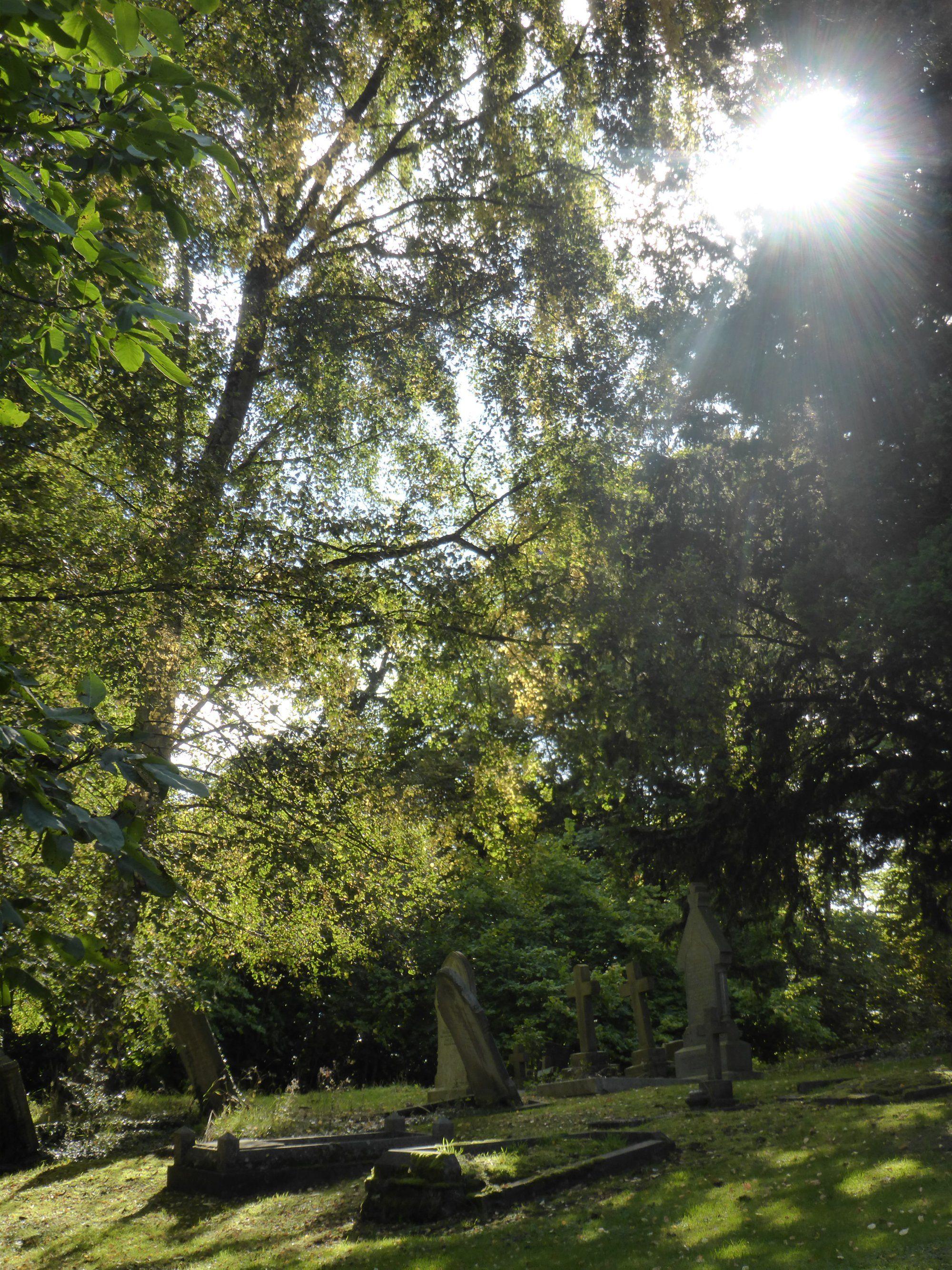 Rowington Churchyard, Warwickshire