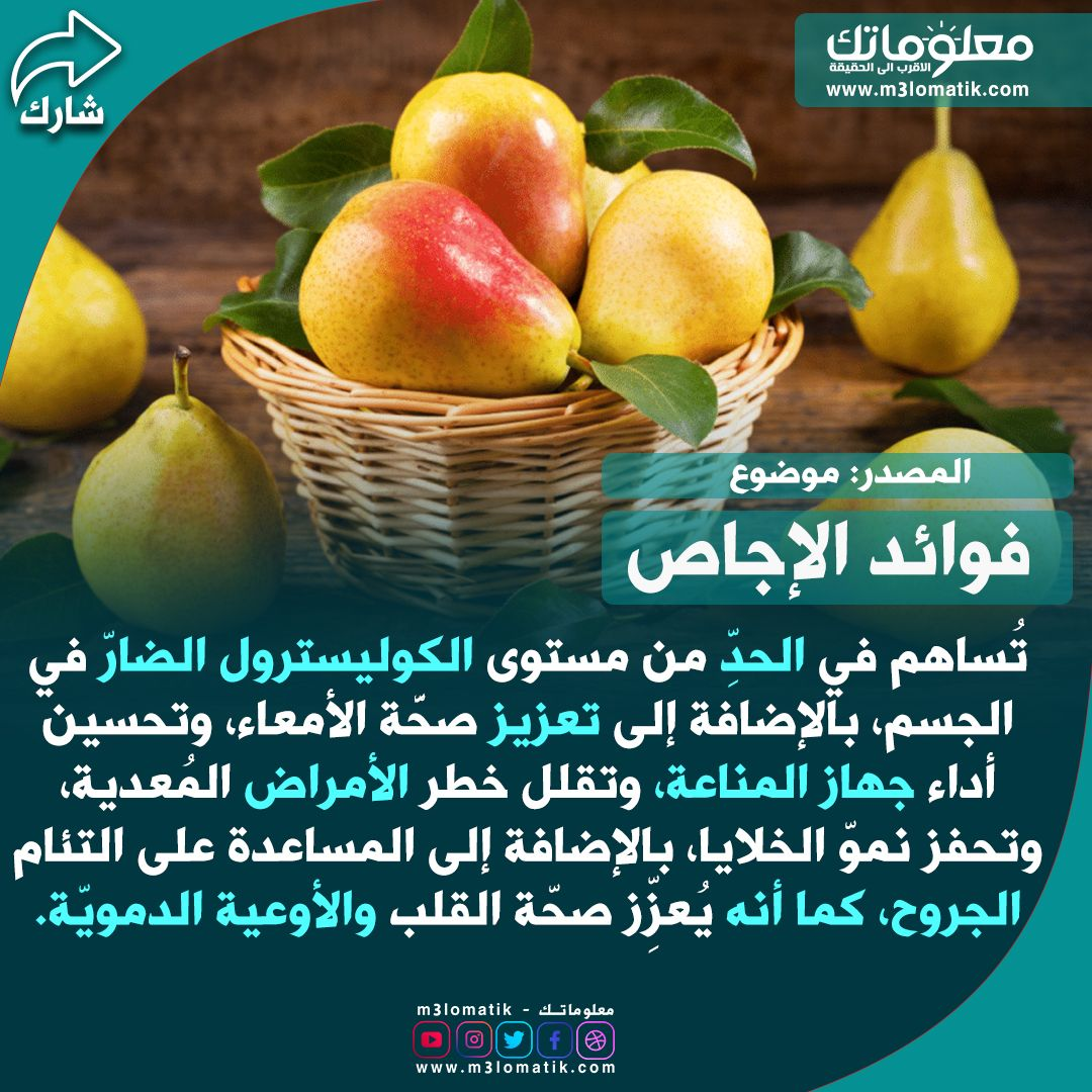 فوائد الإجاص Fruit Ale Food