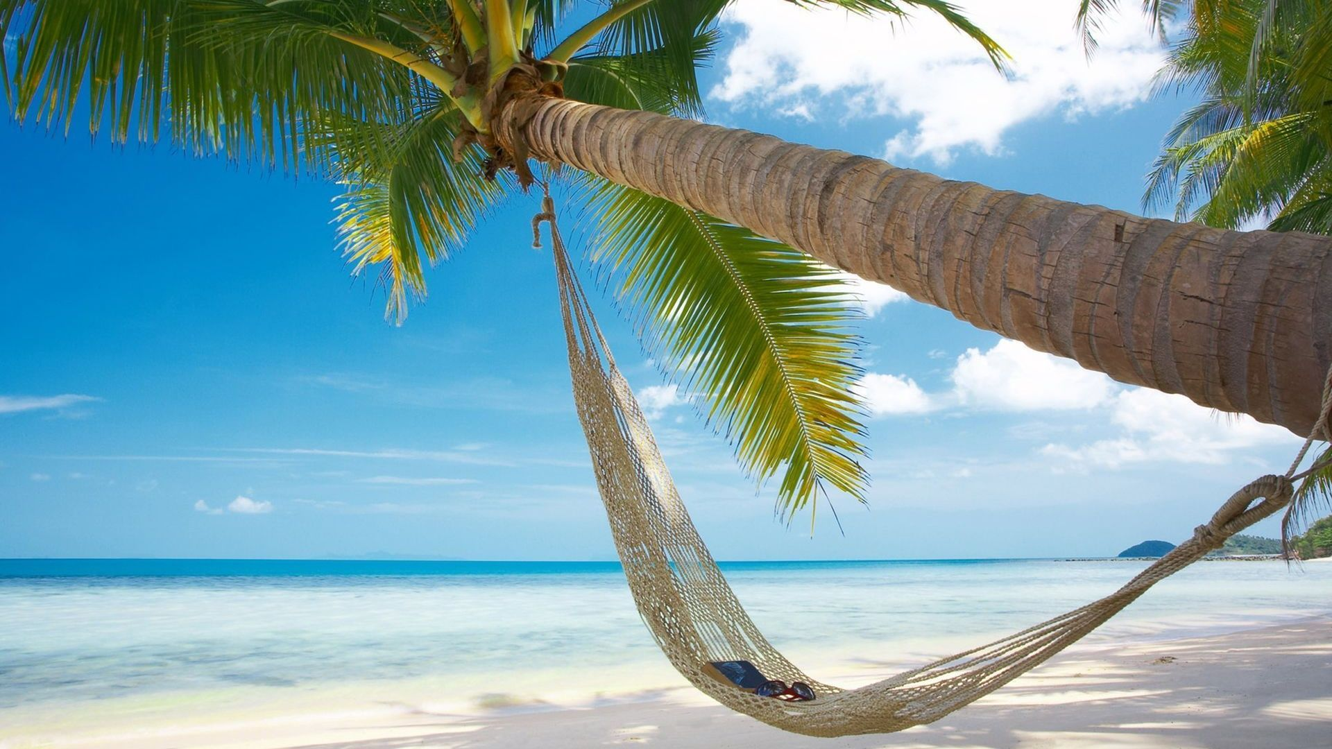 Beach Hammock Palms HD Wallpaper [1920x1080] Need #iPhone