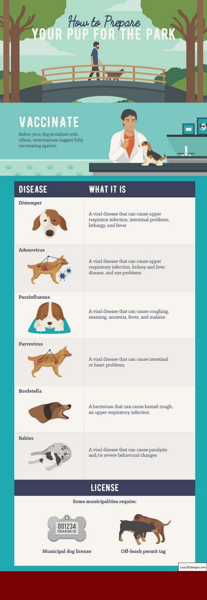 Dog Training Tips Submissive Urination And Pics Of Tips For Leash Training Your Dog Tip 5789624 Dog Park Dog Training Dog Training Obedience