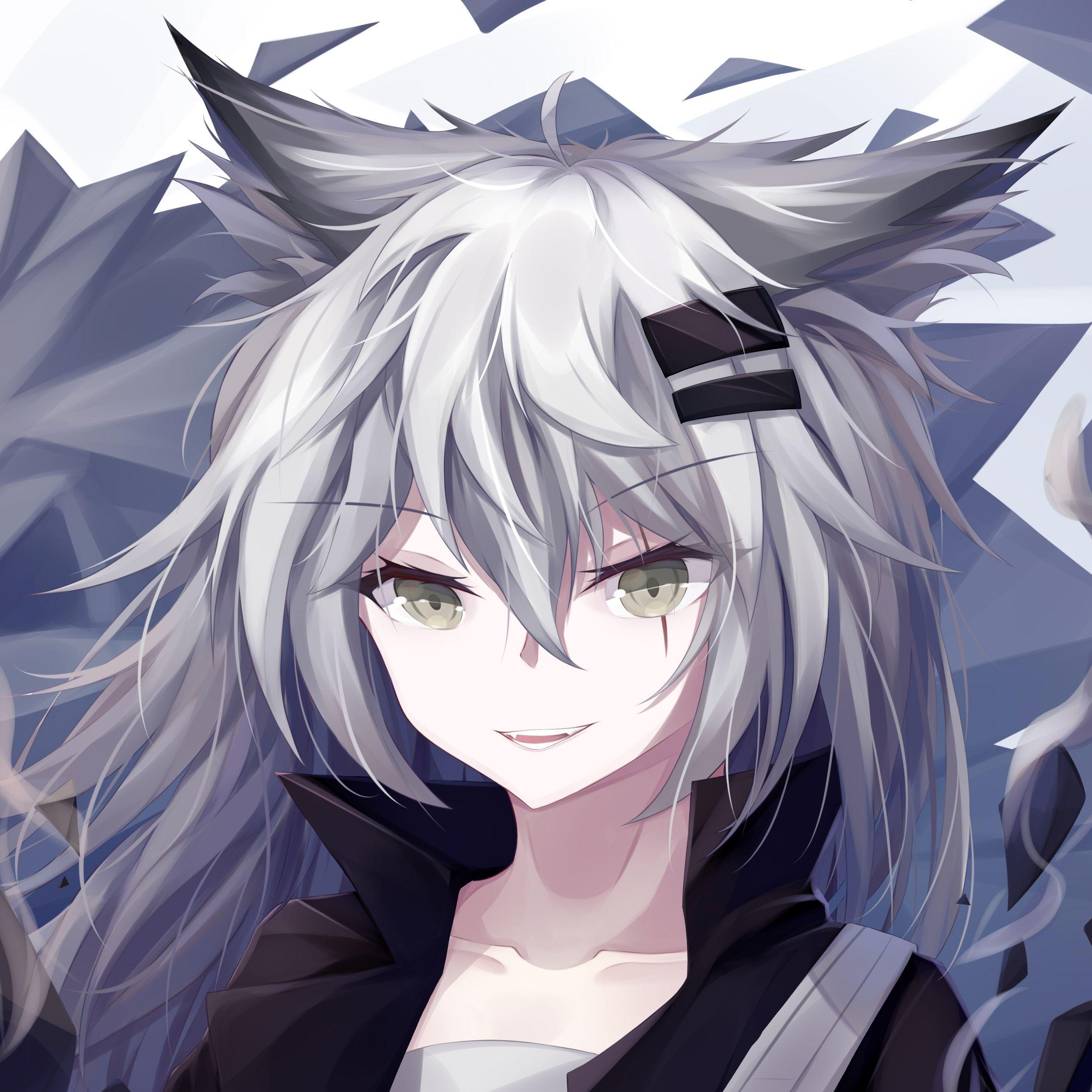 Me Encanta El Anime Anime Wolf Girl Cat Girl Anime Neko